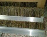 博艺隆厂家直销门底毛刷 ,密封毛刷,防尘毛刷