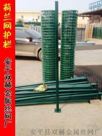 供应厦门PVC浸塑电焊网片(1米宽)