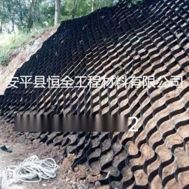 拓林厂家直销生产价格HDPE植草护坡土工格室