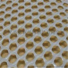 厂家批发塑料养殖网 育雏网 塑料格网 质量保证