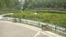 城市道路绿化带围栏,pvc草坪围栏