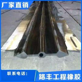 衡水路丰钢边式止水带