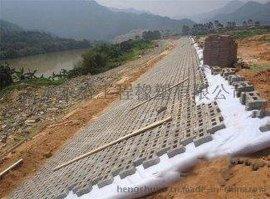复合土工膜规格,两布一膜价格,衡水永盛橡塑