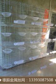 厂家直销配对养殖鸽子笼,优质批发鸽笼