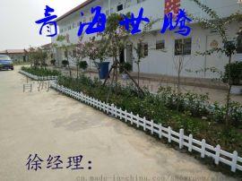 世腾绿化护栏30cm*3mPVC草坪护栏