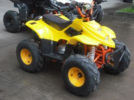 SRO-ATV002 110cc 沙灘車