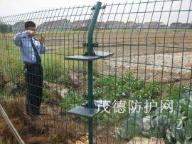 油菜种植防护网@雄县农业种植防护网@种植防护网批发厂家
