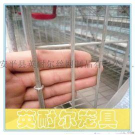 三层五门蛋鸡笼|1.95米蛋鸡笼|英耐尔优质育雏鸡笼