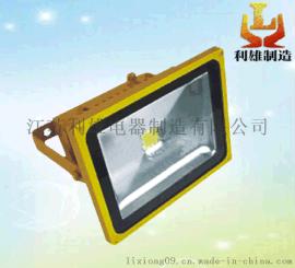 防爆泛光灯,LED泛光灯LED防爆泛光灯,小功率泛光灯