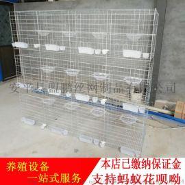 鸽笼;鸽子用品用具;鸽笼厂家哪里便宜