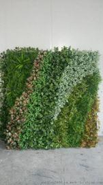 寧波妍景綠化牆,酒店裝飾,餐廳背景牆