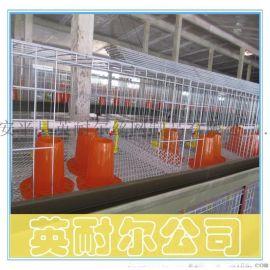 三层两门肉鸡笼|1.4米加粗肉鸡笼|英耐尔各种鸡笼