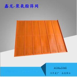 定制聚氨酯脱水筛板 矿用 高耐磨