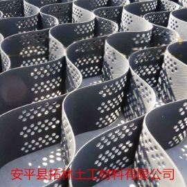 厂家直销 蜂巢式土工格室 打孔格室 塑料焊接土工格室 型号齐全