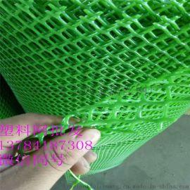 塑料养殖网 家禽养殖网 育雏塑料网 养鸡网