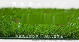 成都塑料草坪厂家,仿真人造草坪