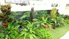修文室内生态绿化装饰及仿真植物屏风工程润园全权承包