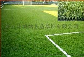 厂家直销仿真草坪_幼儿园草坪工程_运动草坪足球场加密优质草坪