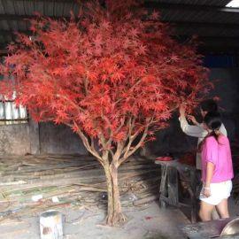 仿真枫树 红枫树 五爪枫树 日本枫树 香山枫树