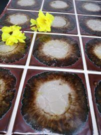 淄博千纳陶艺彩晶釉面砖瓷砖地板砖CJ系列