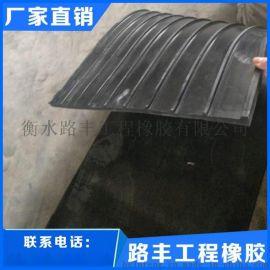 衡水路丰外贴式橡胶止水带厂家直销
