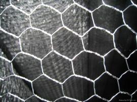 六角网包塑六角网 保温网 拧花网 冷镀锌