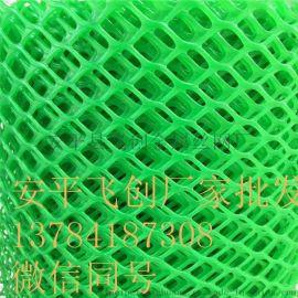 养鸡网 白色塑料平网 塑料平网材质 养殖网 塑料网