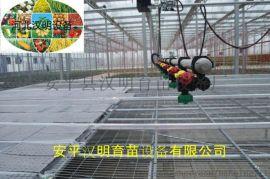 潮汐灌溉式苗床优势与特点