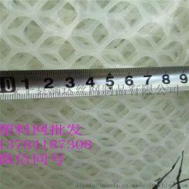 鸡鸭鹅养殖网 塑料苗床网 脚垫网生产厂家