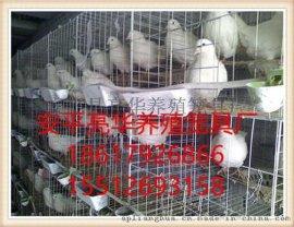 安平亮华养殖笼具厂现货批发4层16位肉鸽笼 加粗加密鸽子笼