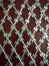 蛇腹形刀刺隔离网 蛇腹形刀刺网