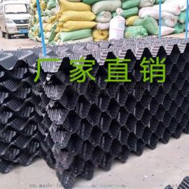 如何养殖鳝鱼提高收入 s波鳝鱼巢 PVC填料