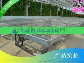 大棚温室苗床移动苗床潮汐苗床网生产厂家