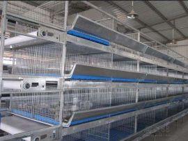 2017新式肉鸡笼养设备/自动清粪肉鸡笼价格/规格-兆东鸡笼