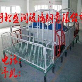 母猪产床 保育床 漏缝地板15631841616