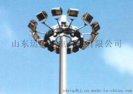 山东路灯,高杆灯,LED道路照明灯