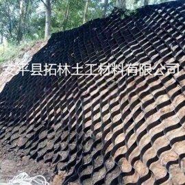 河北厂家供应 热熔式整体型土工格室 厂家直销 蜂巢土工格室护坡 打孔塑料土工格室