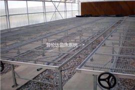 普伦达温室苗床 苗床网片,长期现货供应常用规格苗床网