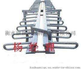 F60型桥梁伸缩缝衡水康晟