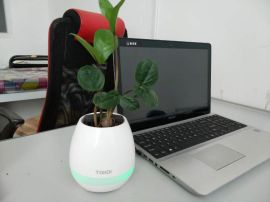 新品蓝牙音箱智能音乐花盆触碰感应创意礼品室内绿色植物音乐盆栽