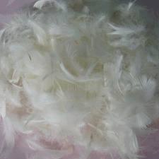 2-4cm羽毛毛片