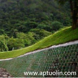 河北拓林土工格室生态护坡护坡绿化