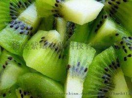 大量眉县原产地品种纯正专家指导成活率高翠香猕猴桃苗