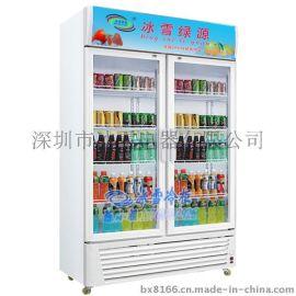 冰雪對開門冰箱立式兩門展示櫃保鮮櫃