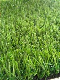 古德草坪三色直加曲幼儿园人造草坪