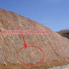 供应龙岩14号镀锌绿化格栅网直接生产厂家