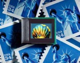 eMagin 0.61寸軍用微型OLED顯示器