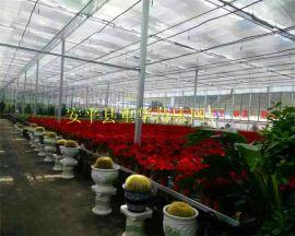 温室用网|河北苗床厂家|温室苗床|镀锌温室苗床|温室喷灌