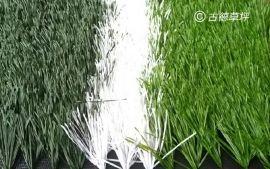 单丝W型耐磨环保抗老化足球场人造草坪