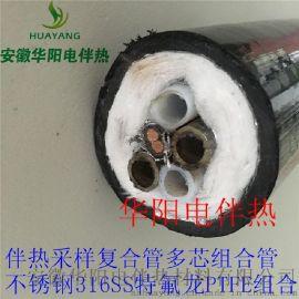 华阳生产双芯伴热管一体化伴热管缆伴热管BWG-C40-A1F8-B1F6-120/150-E